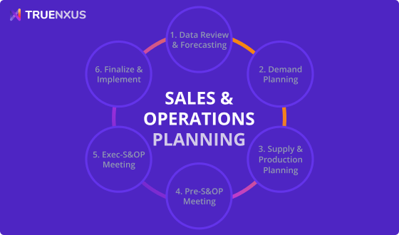 Sales and Operations Planning (S&OP) Process Guide