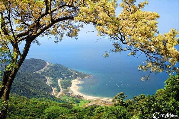 Khu vực bán đảo Sơn Trà