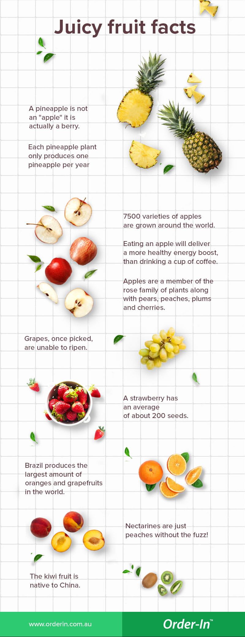 fun fruit facts infographic