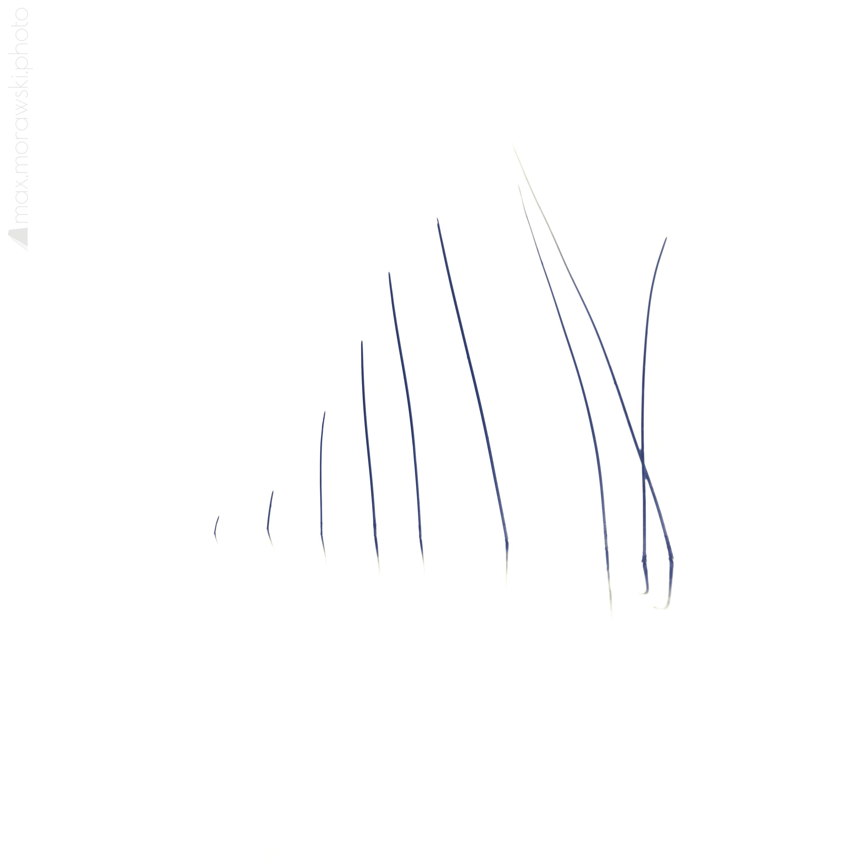 Lake Stone Reeds #10