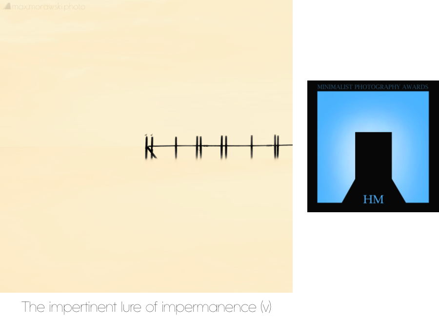 Honourable Mention - The impertinent lure of impermanence (v)