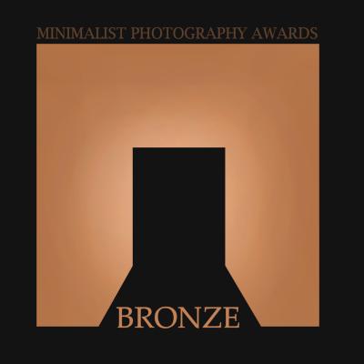 Bronze Award - Architecture