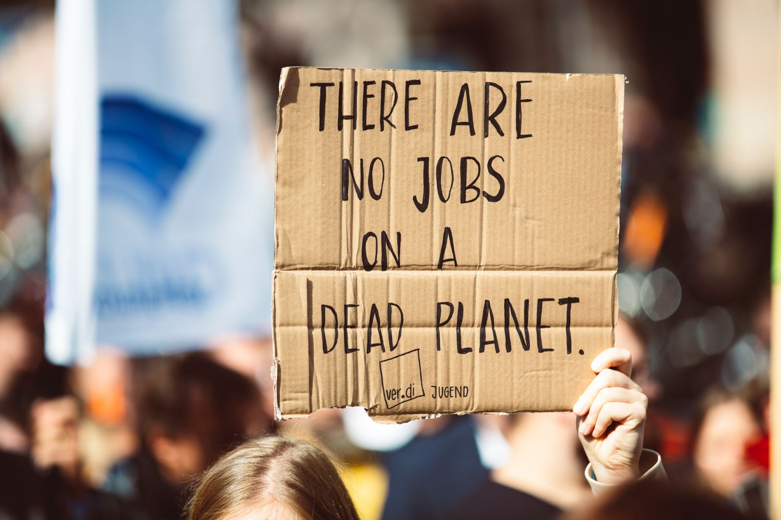 How Creative Agencies Can Help The Planet