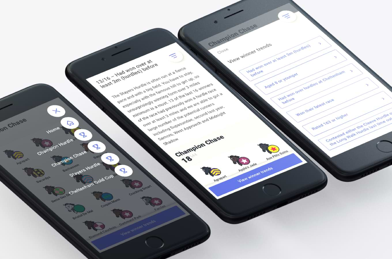 Collection of iPhone mock-ups showing the dashboards' final designs