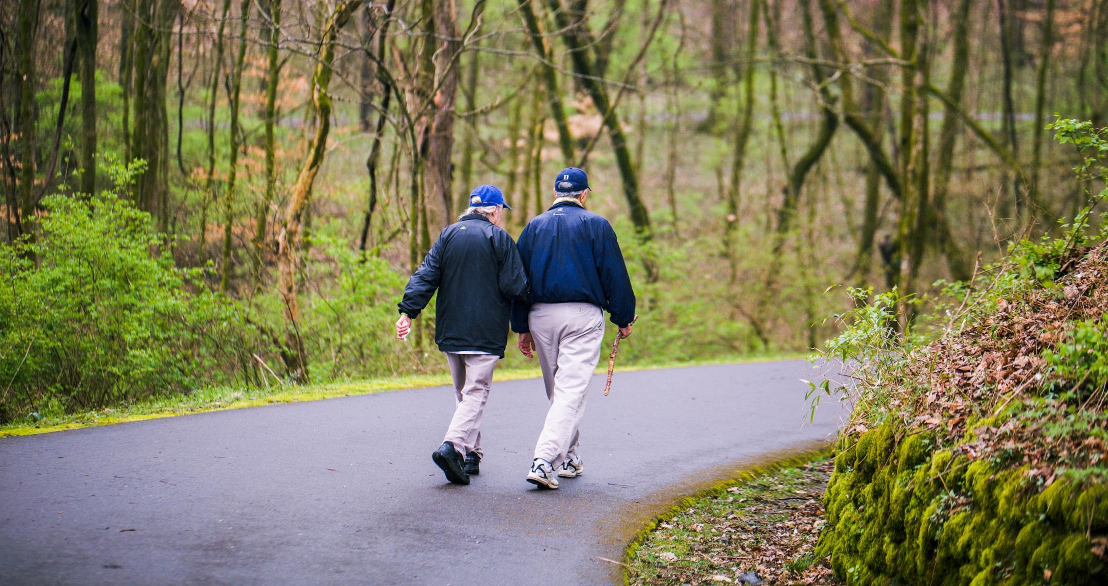 An elderly couple walking in a park