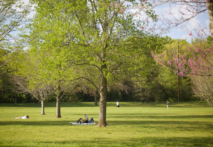 People relaxing under the trees in Warner Parks