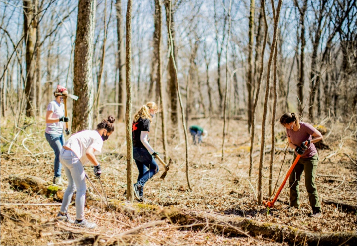 Youth volunteering in the park