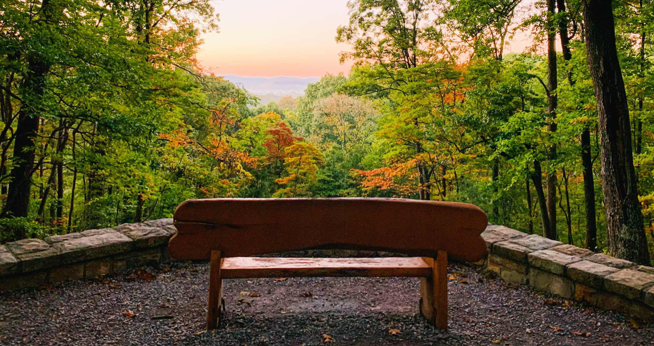 A bench facing Warner Park