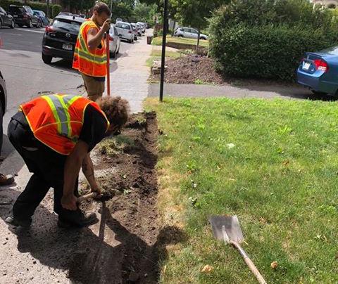 Préparation du sol pour pose de tourbe Montréal Laval