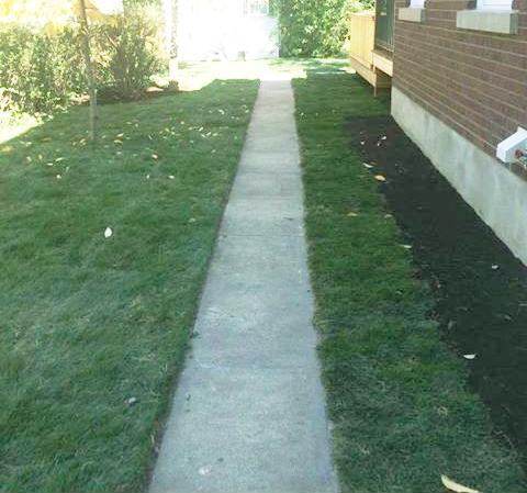 Quand tondre pelouse commerciale Montréal Laval
