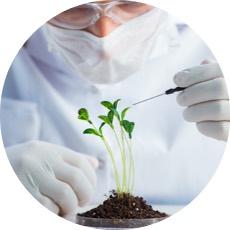 Biotech und Biologie