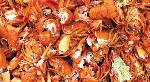Sustainability: Don't waste seafood waste : Nature News & Comment