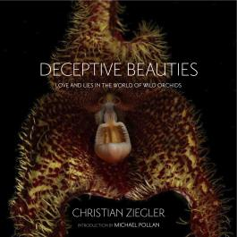 Deceptive Beauties: Love and Lies in the World of Wild Orchids