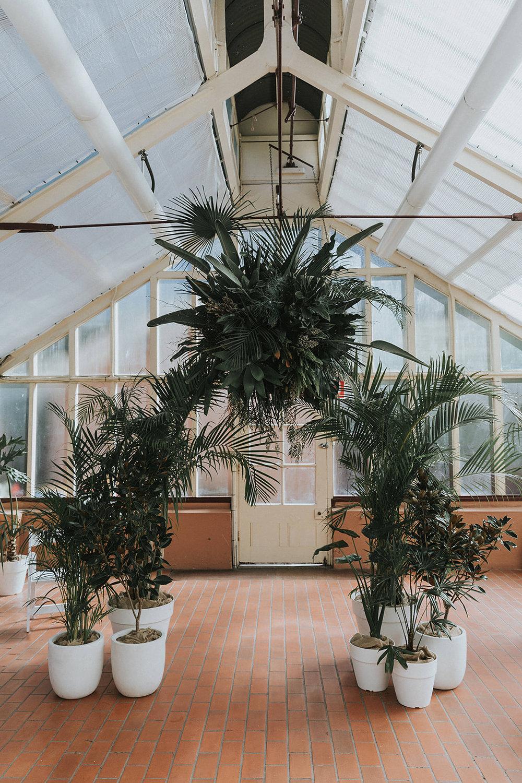 palm house wedding ceremony sydney botanic gardens wedding arch
