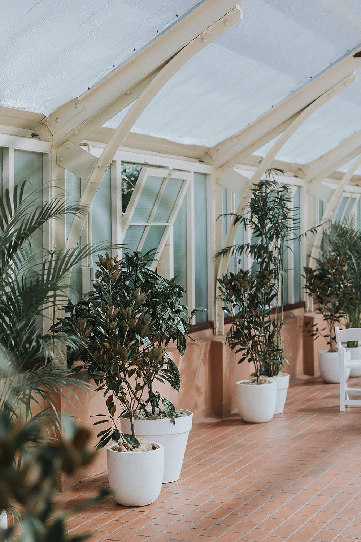 palm house wedding ceremony sydney botanic gardens