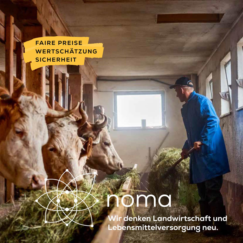 noma B2B Folder