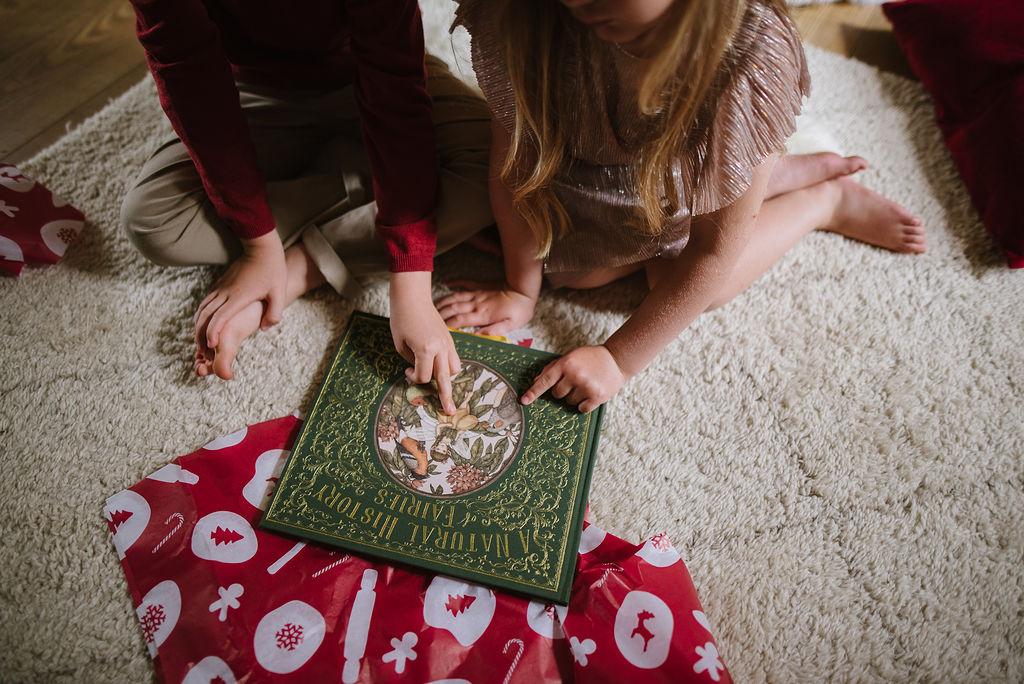 Holly Fairy Play Kit