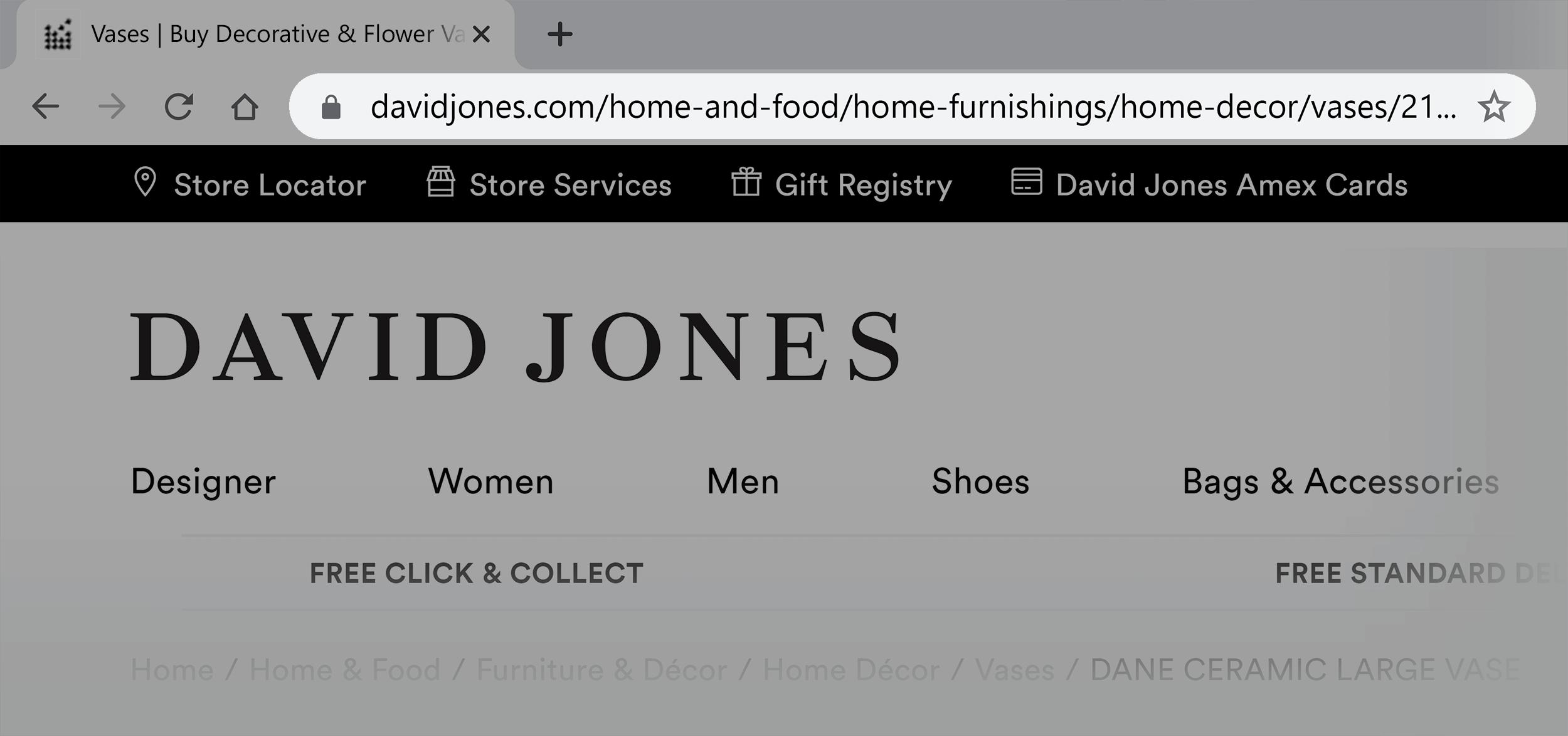 David Jones – Long URL example