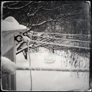 snow covered laundry line on a writing winter day by Suzi Banks Baum