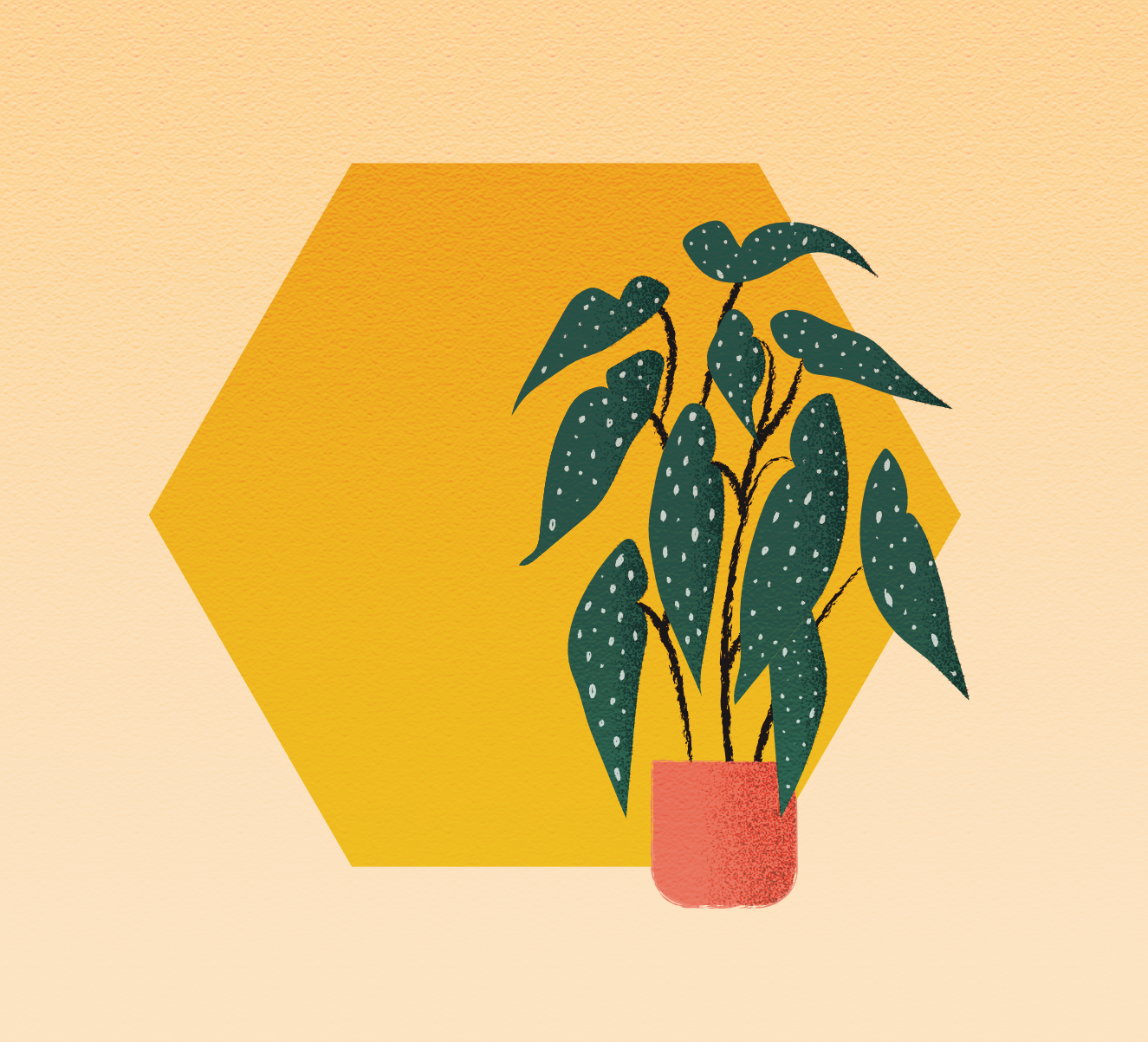 wijb.design portfolio gallery - plant