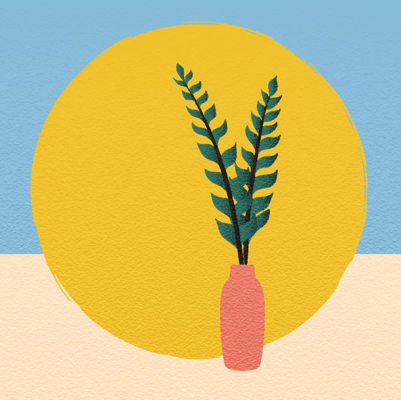 wijb.design portfolio gallery - plant illustration