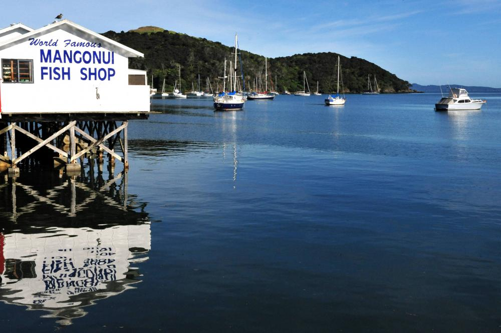 View of Mangonui Fish shop and boats in Mangonui harbour