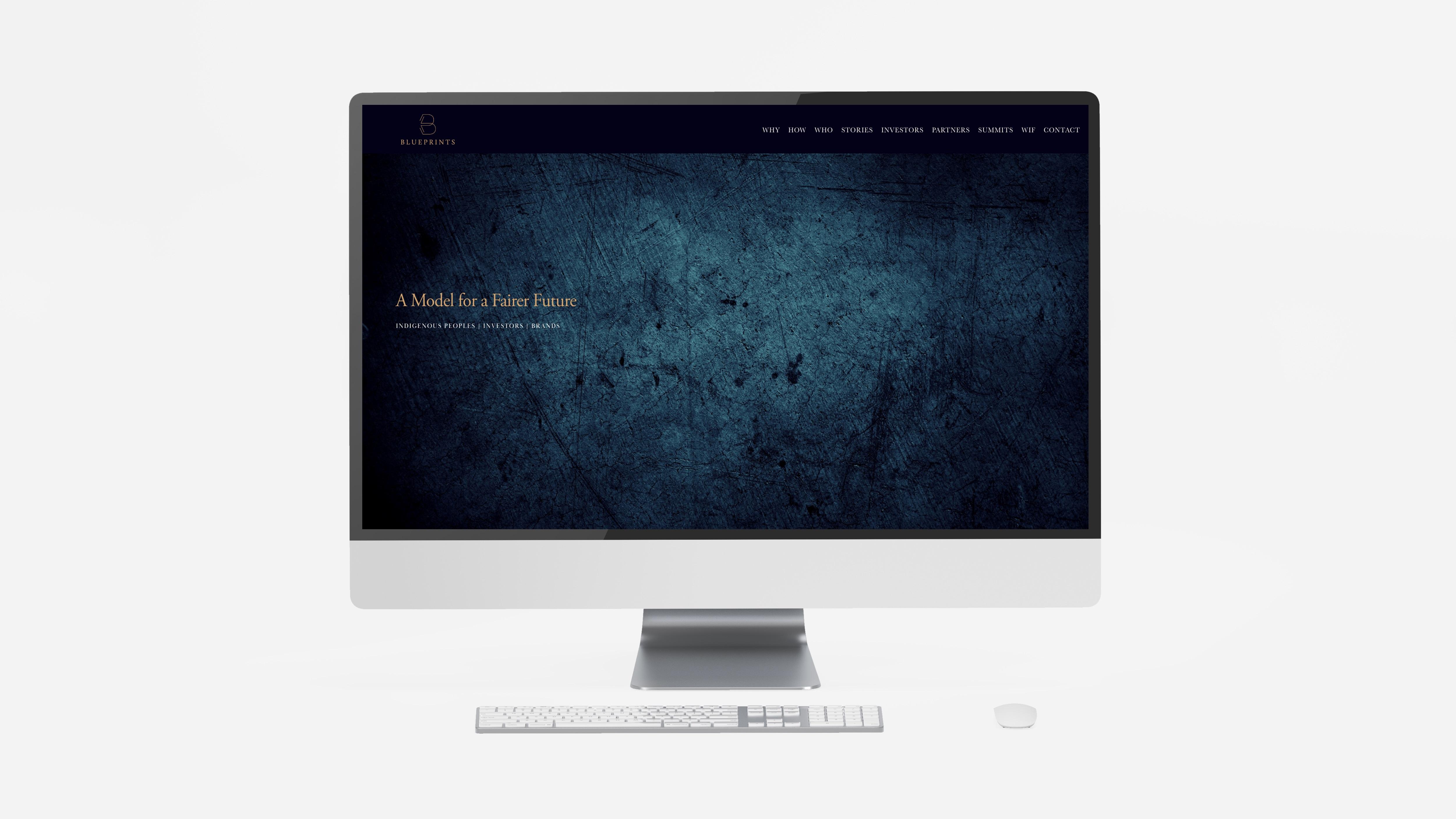 WEBSITE DESIGN + BUILD