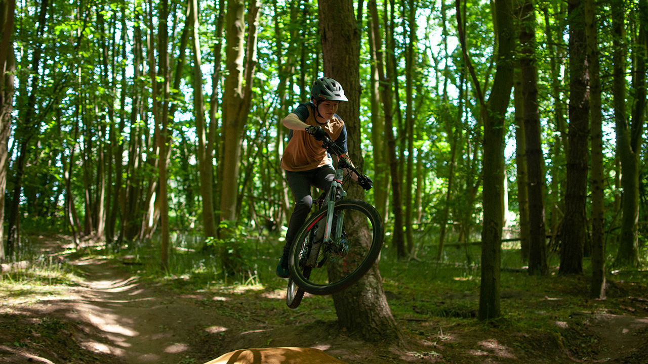 Picture of bike in the woods