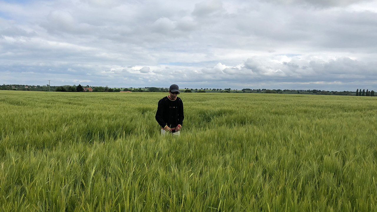 Man standing in a field of barley