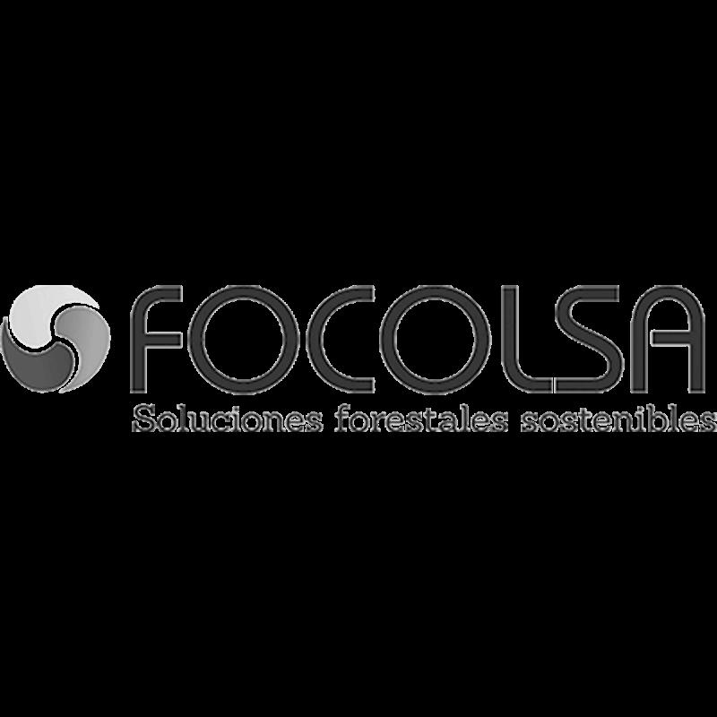 aliados-focolsa