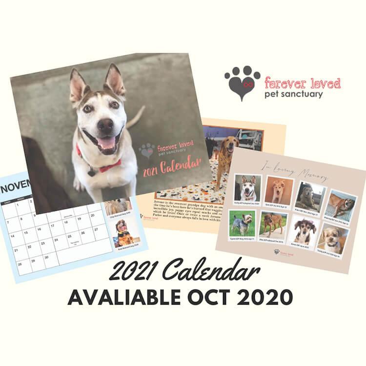 Forever Loved Pet Sanctuary board members