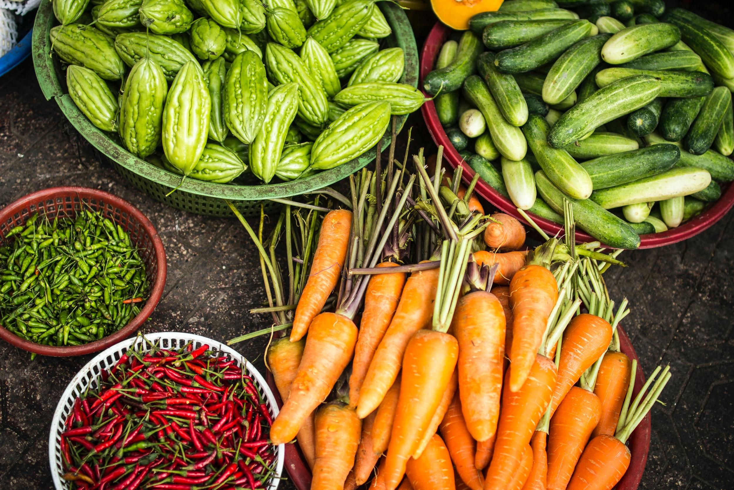The Best Diets for Longevity