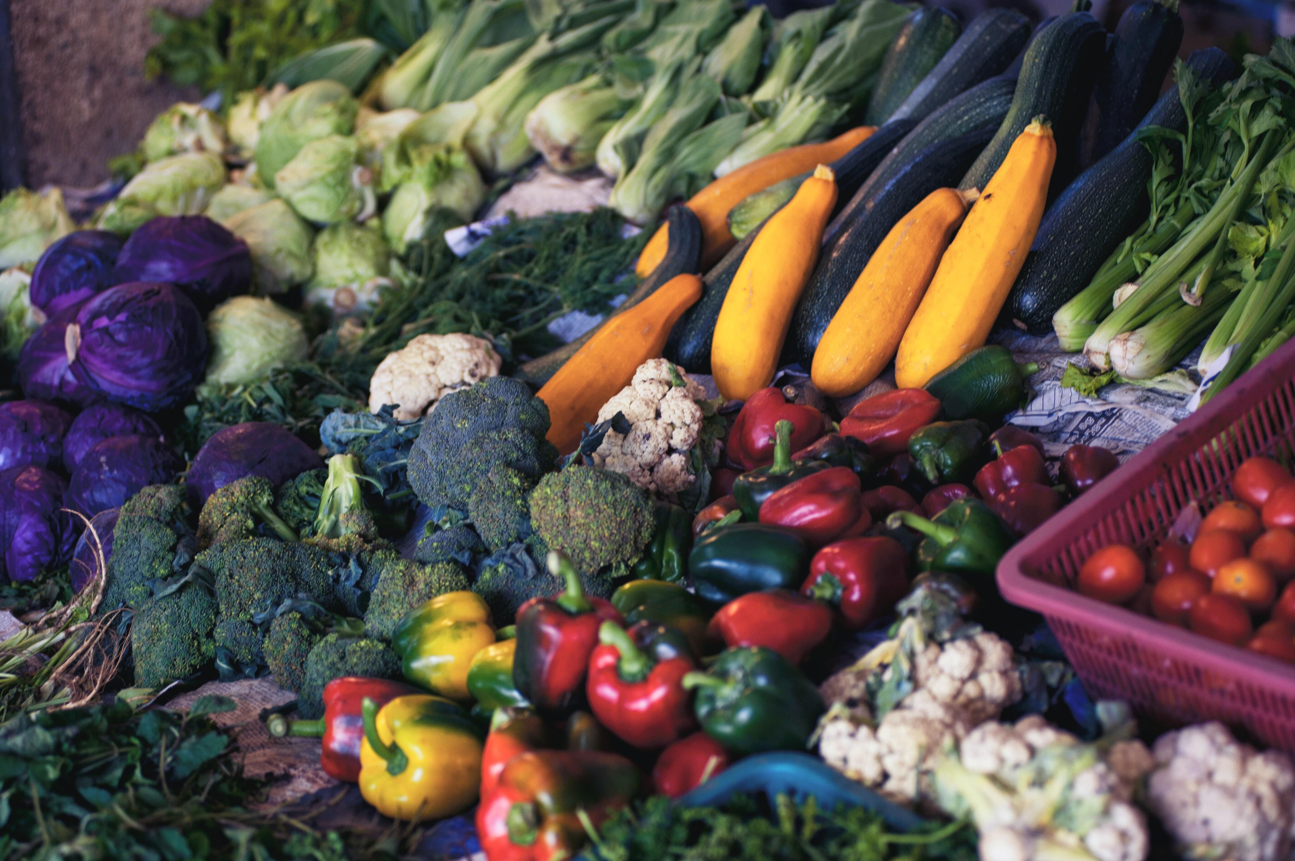 How to Build a Low Calorie Diet that Improves Your Longevity