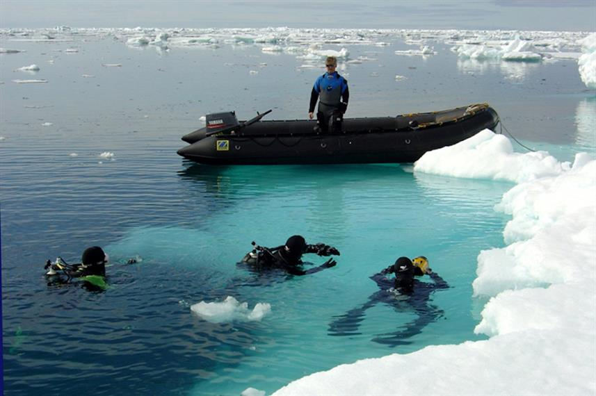 Diving in the ice cold waters of Antartica