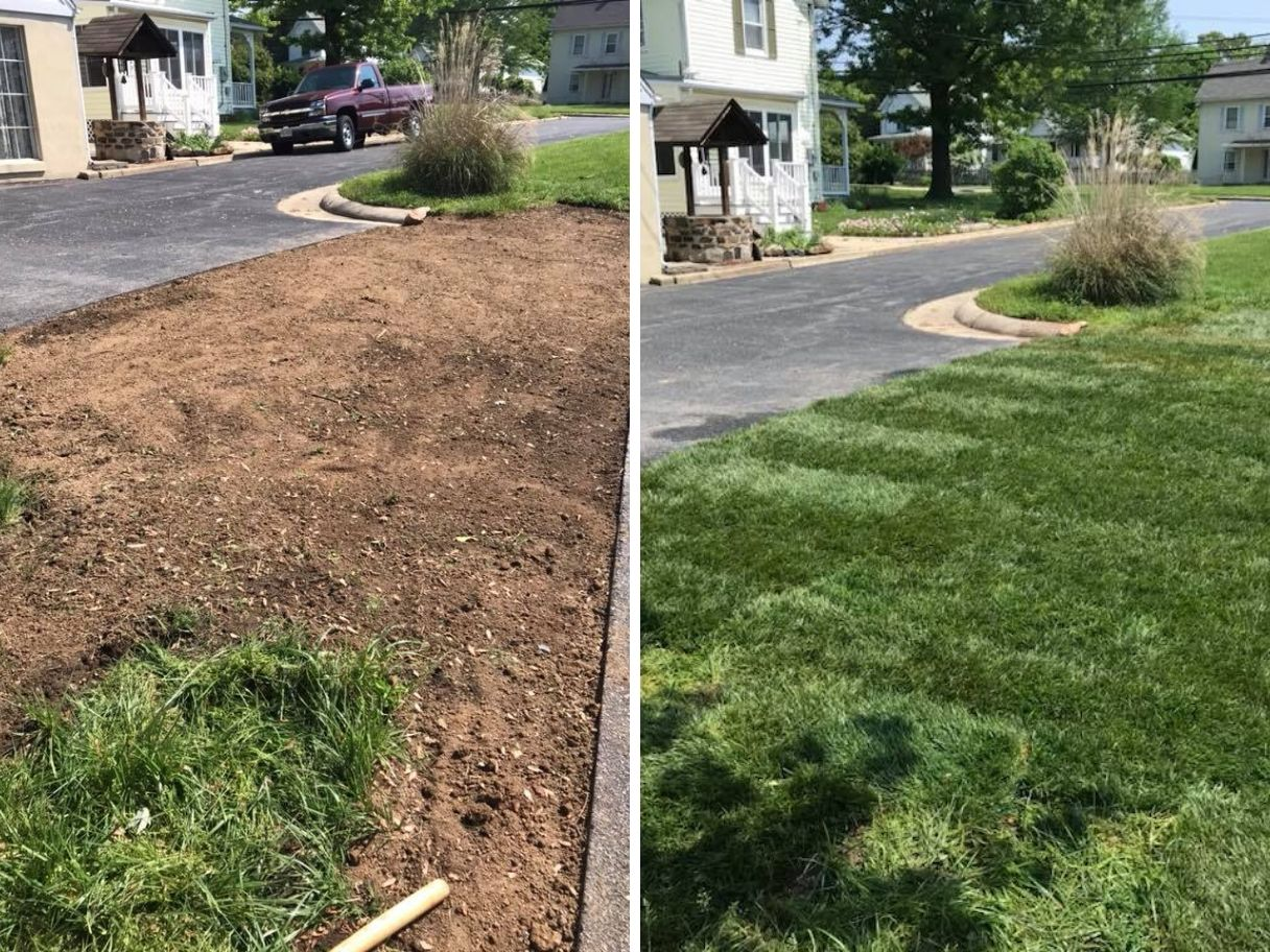 landscaping-before-and-after-sod-install