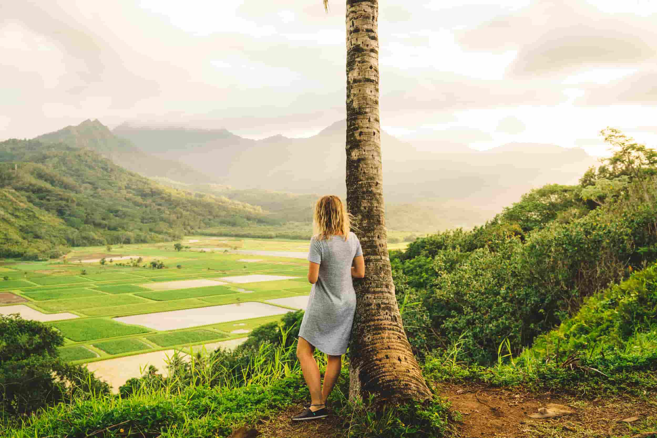 A woman stands by a lone palm tree overlooking lush mountains.
