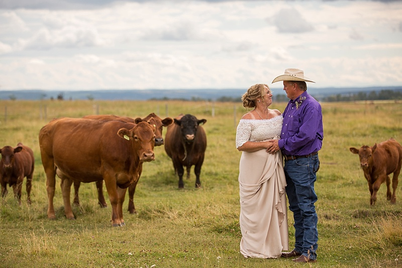 A ranching couple pose for portraits in front of their cattle. Photo by Sarah Murdoch (Modern Photography).