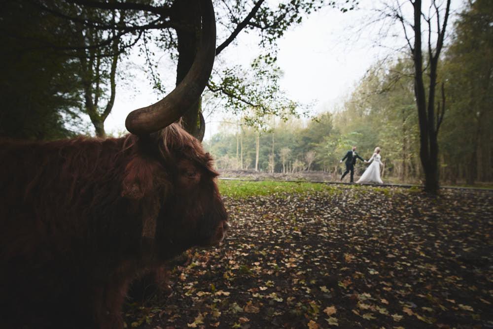 wandeling bruidspaar