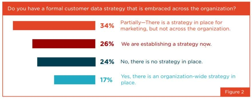 companies that have a formal customer data strategy