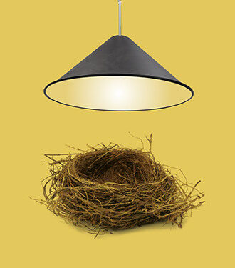 A pendant cone light by Tom Dixon shining on a bird's nest.
