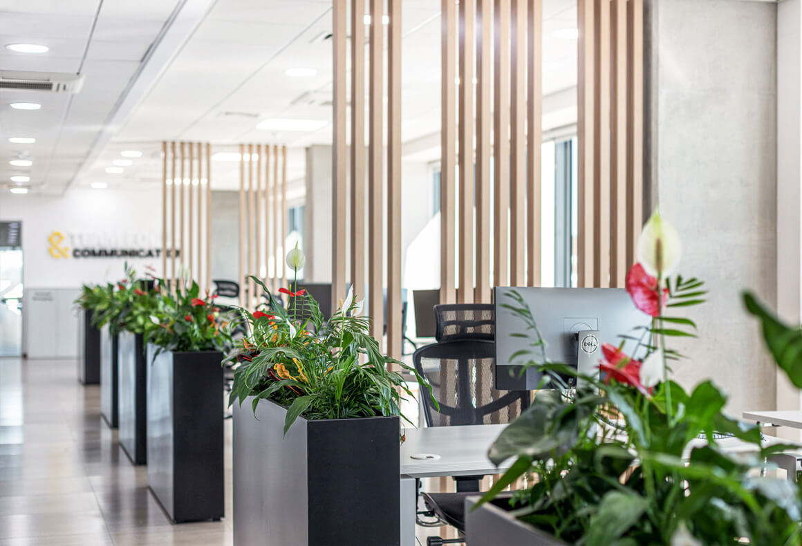 Interior design of Exness office with vertical wooden beam partition screens and long black planters.