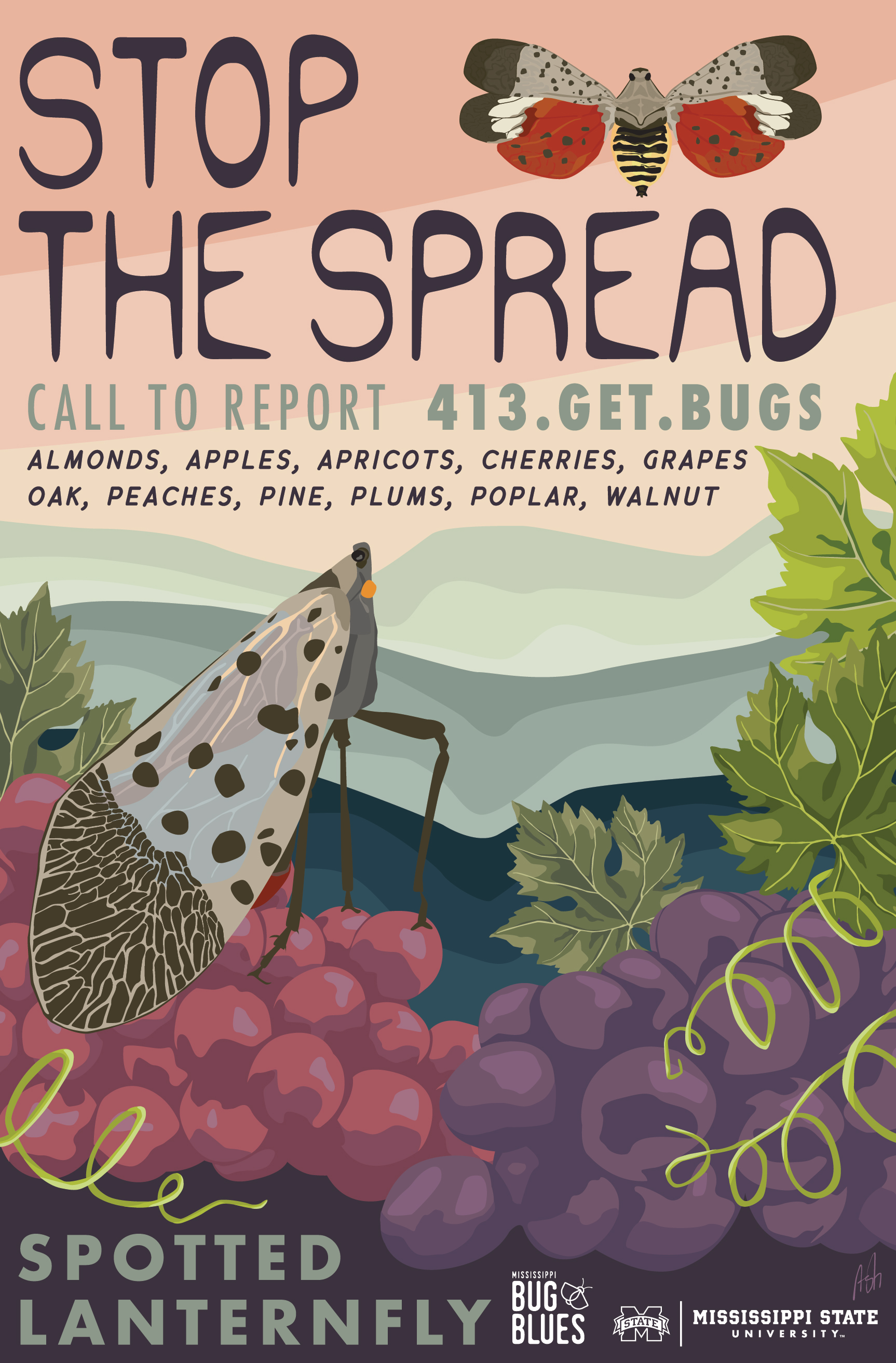 stop the spread invasive insect spotted lanternfly lantern fly awareness WPA crop crops field  grapes get bugs getbugs pdf mississippi bug blues  nymph