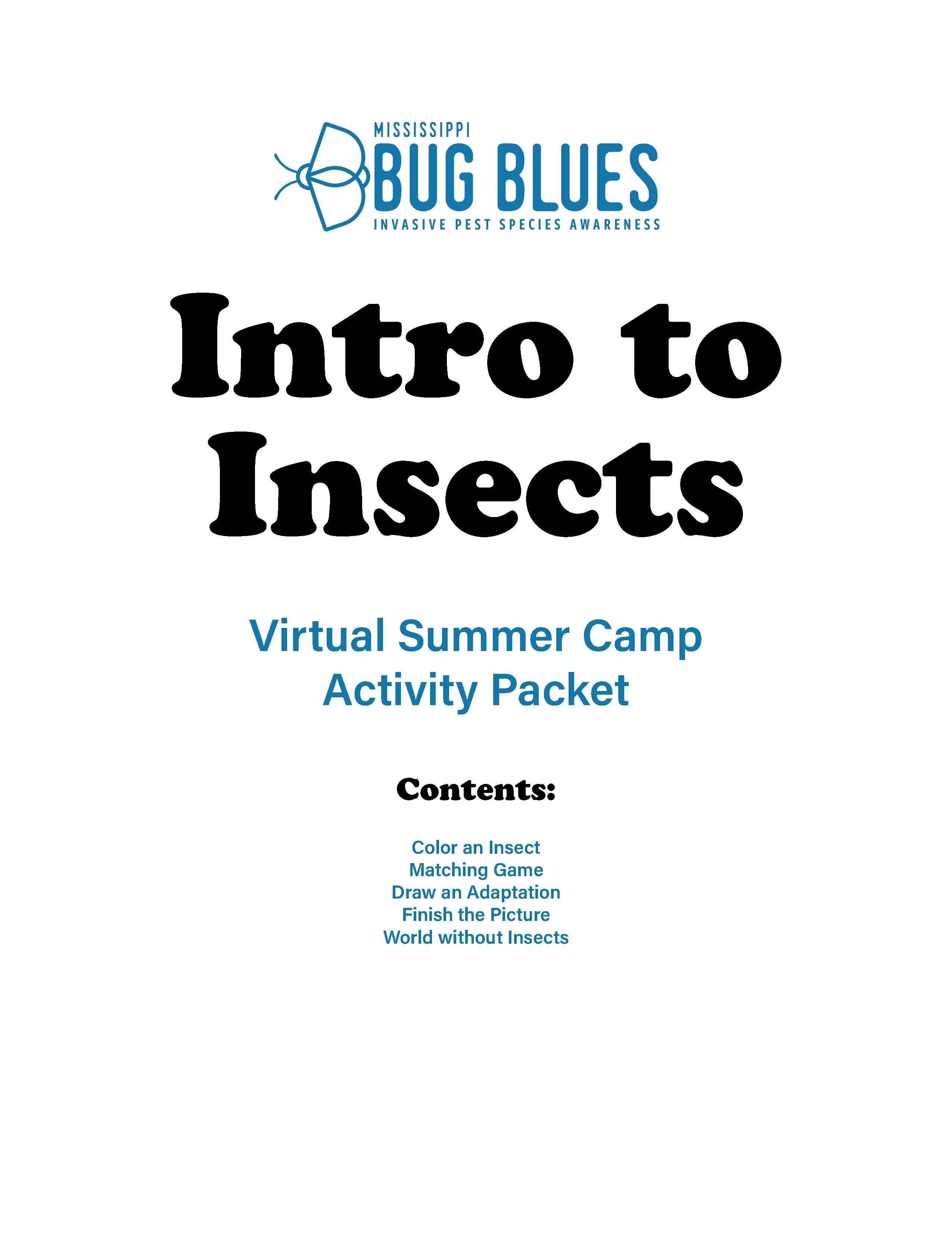 Intro to Insects Virtual Online Summer Camp Activity Packet Workbook