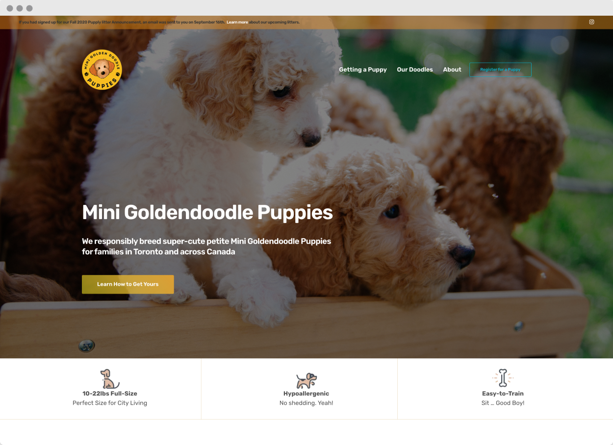StoryBrand Website Example #7 –Mini Goldendoodle Puppies