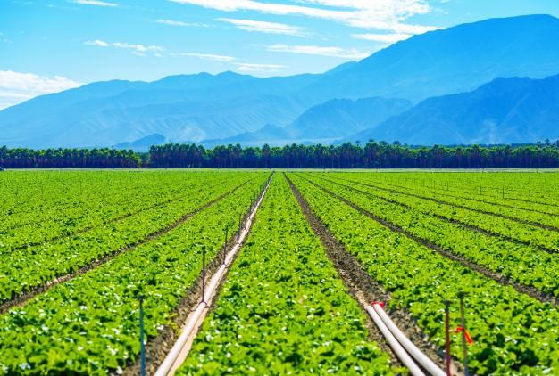 Farmland Fund