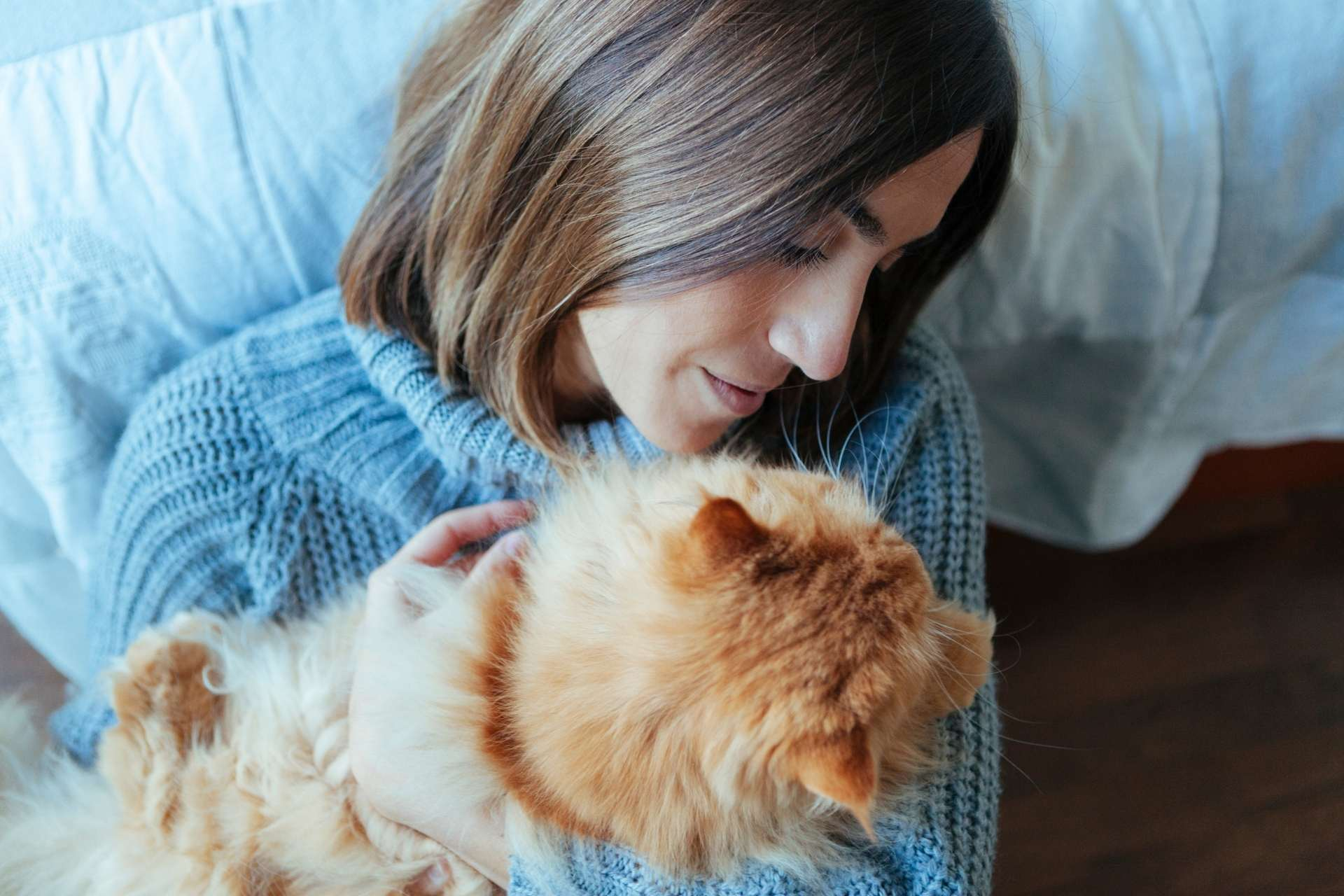 Pro Tips: How To Raise A Friendly Cat