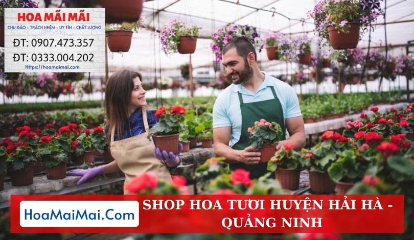 Shop Hoa Tươi Huyện Hải Hà - Điện Hoa Quảng Ninh