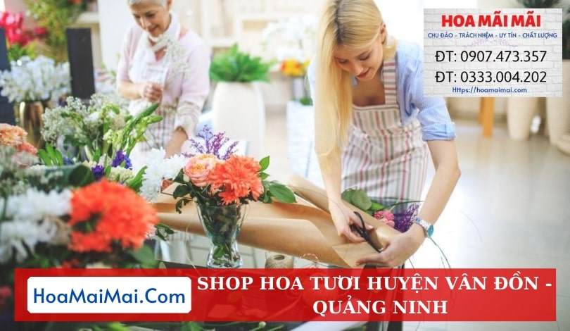 Shop Hoa Tươi Huyện Vân Đồn - Điện Hoa Quảng Ninh