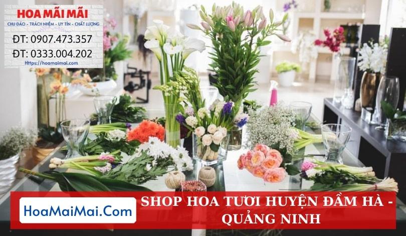 Shop Hoa Tươi Huyện Đầm Hà - Điện Hoa Quảng Ninh