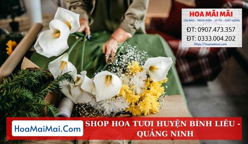 Shop Hoa Tươi Huyện Bình Liêu - Điện Hoa Quảng Ninh